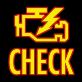 Wonder less about what's causing your check-engine light to glow