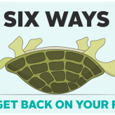 The connection between used cars, turtles and your monthly loan payment
