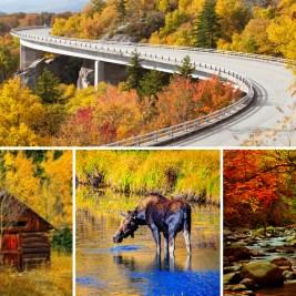 10 Instagram-worthy fall foliage drives
